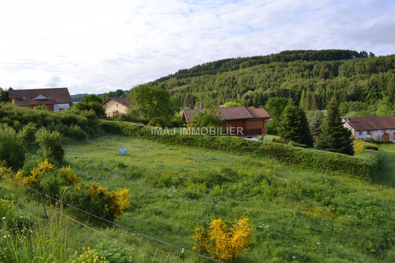 Achat terrain vienville 88430 imaj immobilier for Agence du chateau epinal